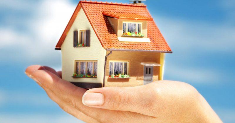 Property Management Options