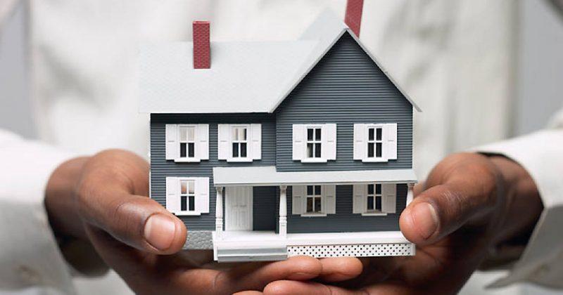 Property Management Options: Agent