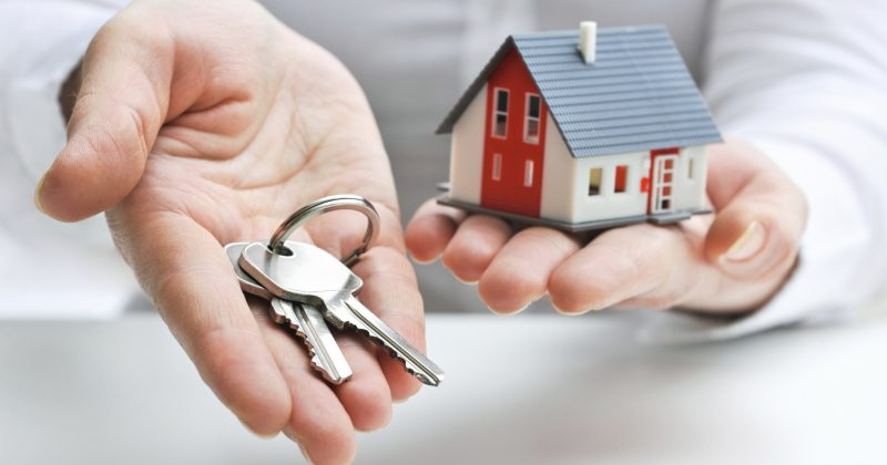 Property Management Options: Firm